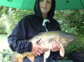 This is Charlie Chapple with another nice common carp.