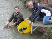 This is Phil with Tom from Priory Fisheries with some of our fabulous new green tench.