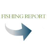 View our match calendar and fishing report